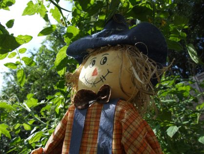 Summer Scarecrow Trail